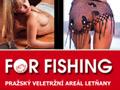 FOR FISHING - přípravy vrcholí