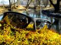 Slnečné polarizačné okuliare