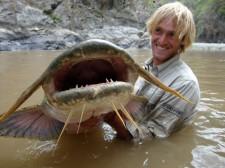 GiantDevilCatfish.jpg