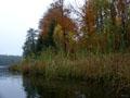 Staňkovský rybník aneb když chceš chytat, tak si chytej