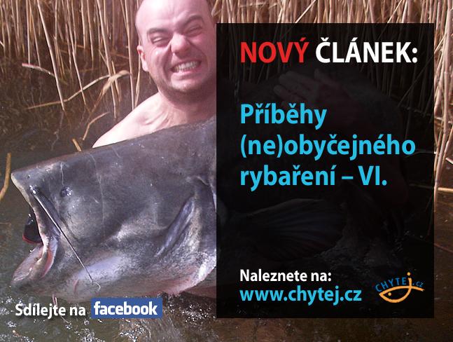 Příběhy (ne)obyčejného rybaření – VI.