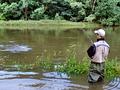 Rybařina ve vysoké vodě