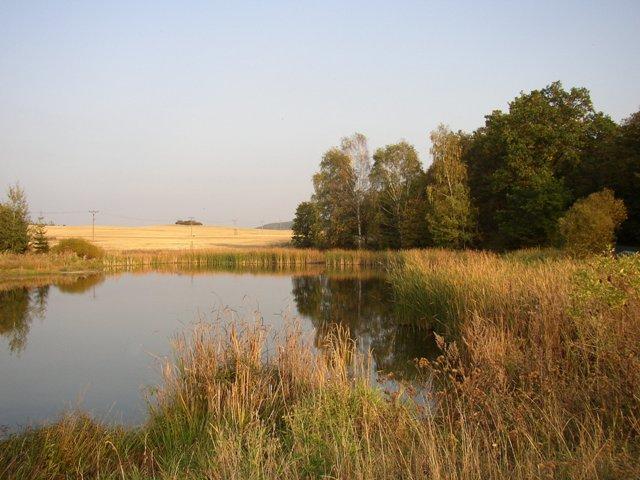 Kocába 1 A - rybník Nebeský, Autor fota: ČRS