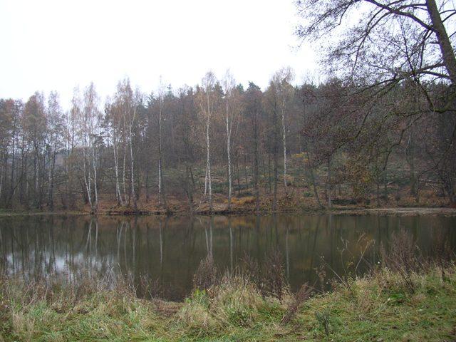 Kocába 1 A - rybník Sudovice, Autor fota: ČRS