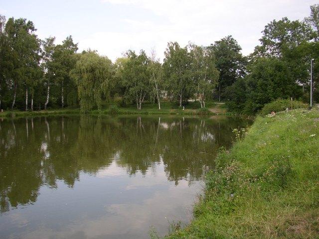 Rokytka 1 - Požární rybník - Běchovice, Autor fota: ČRS