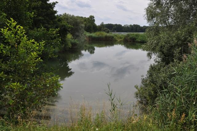 Labe 16 M - pískovna Mlékojedy - pohled na malou zátoku u Tišic, Autor fota: ČRS
