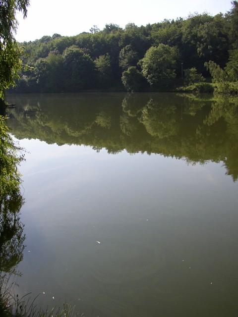 Šárecký potok 2 - ÚN Džbán, Autor fota: ČRS