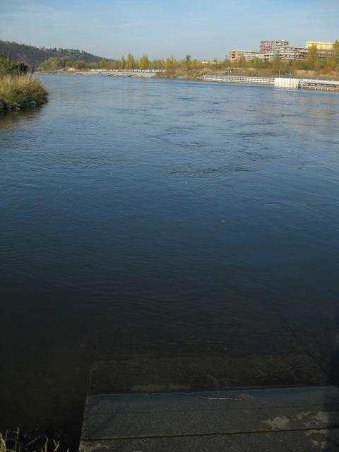 Vltava 6 - pohled od Modřanského jezu po proudu, Autor fota: ČRS