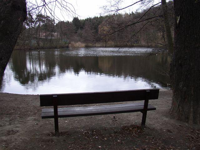 Vltava 6 - rybník Labuť, Autor fota: ČRS