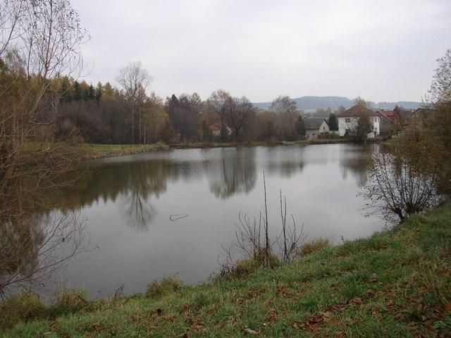 Sázava 12 - Bohušický rybník, Autor fota: ČRS