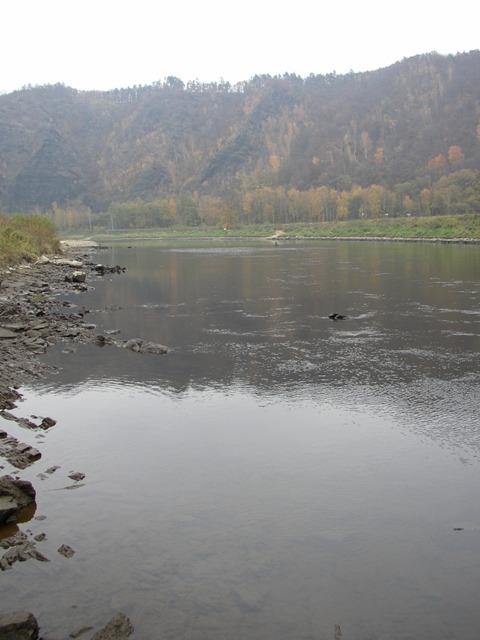 Vltava 7  u přívozu ve Vraném nad Vltavou - nízký stav vody, Autor fota: ČRS