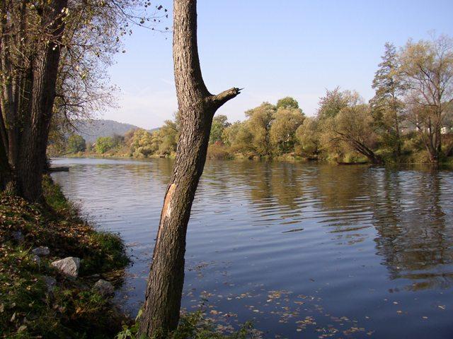 Berounka 2 - pod jezem v Zadní Třebáni, Autor fota: ČRS